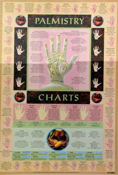 Wall Charts By Dynamo House