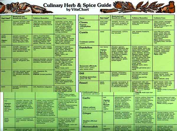 the spice and herb bible pdf